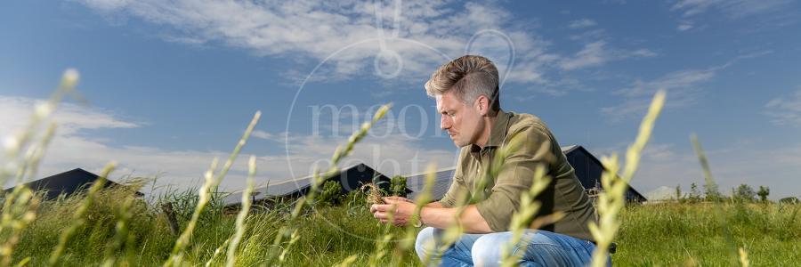 Fotoshoot veehouder en adviseur5